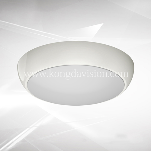 Emergency Ceiling Light